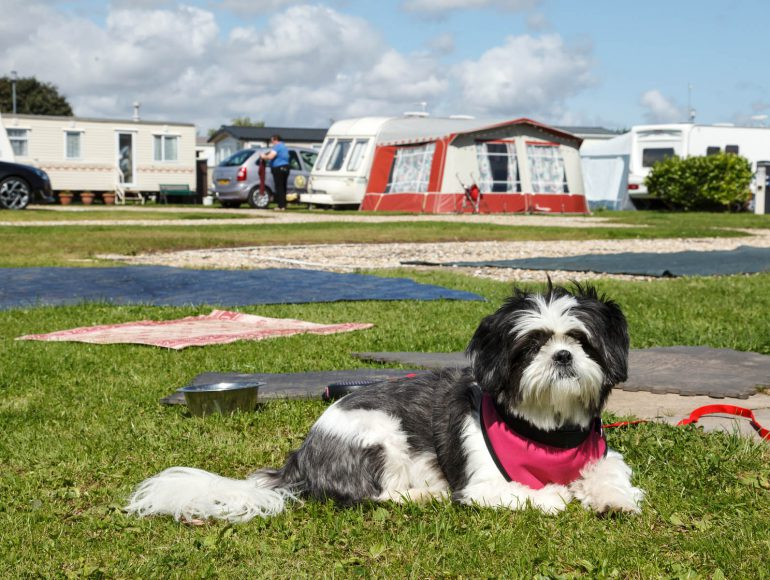 north shore camping skegness