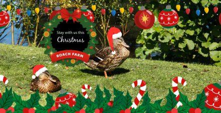 Roach-Farm-Christmas-touring