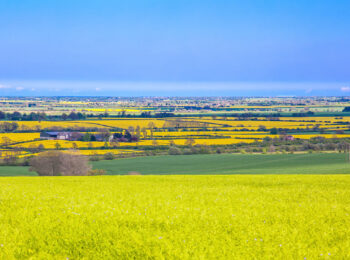 Lincolnshire-Wolds-Fields-View